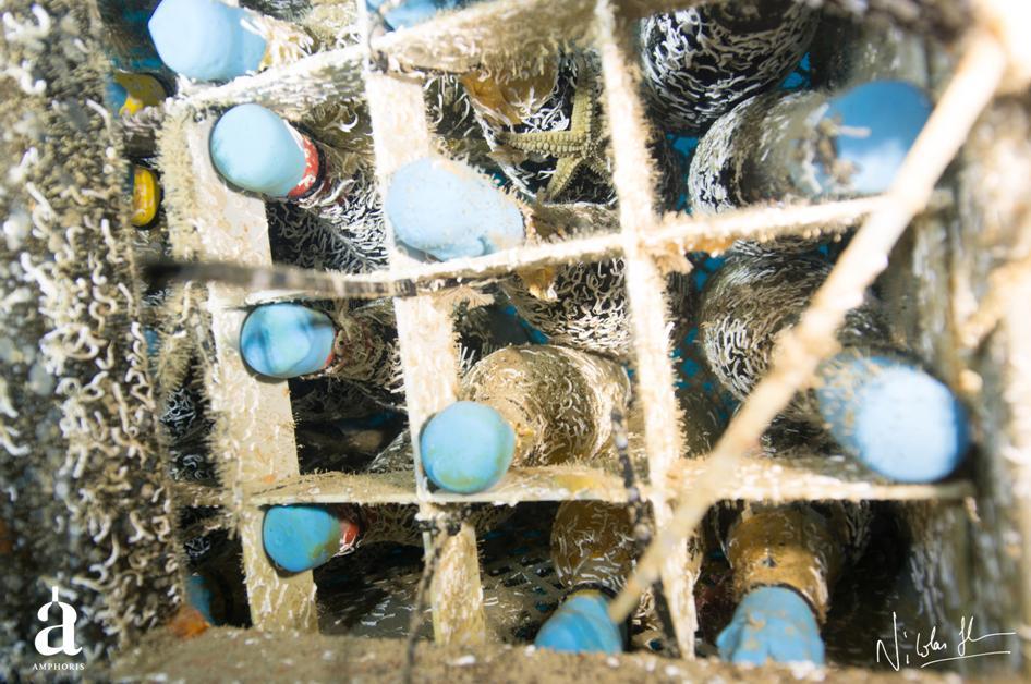 Amphoris | Bouteilles sous la mer